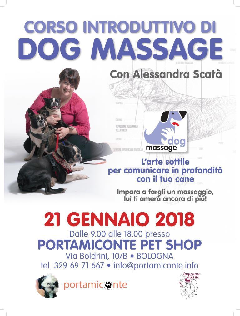 dogmassage-bologna