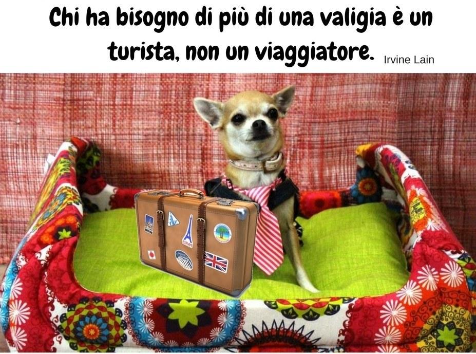 valigia-del-cane