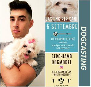 dogcasting-portamiconte-linea101