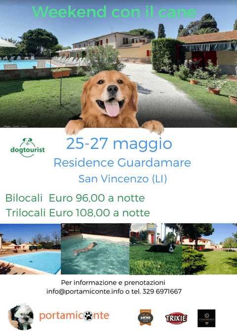weekend-con-il-cane