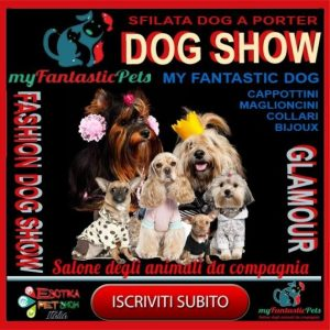 dog-model