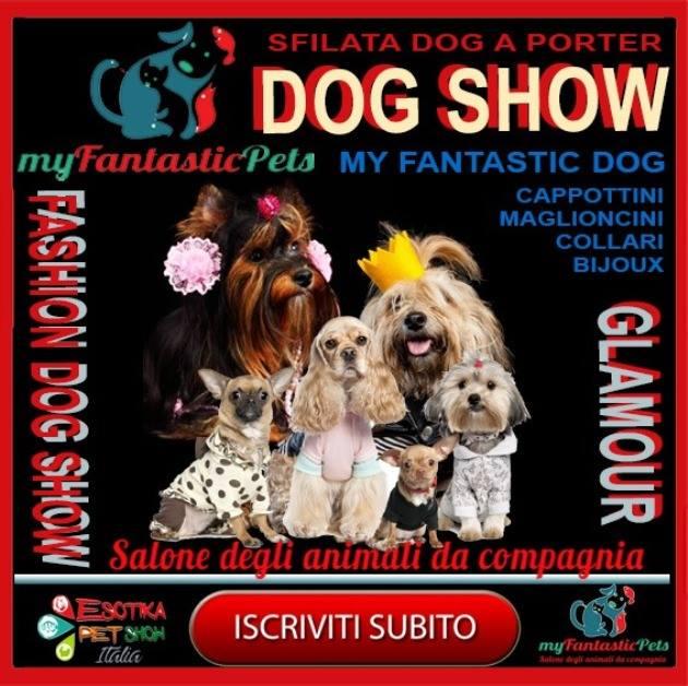 sfilata-dog