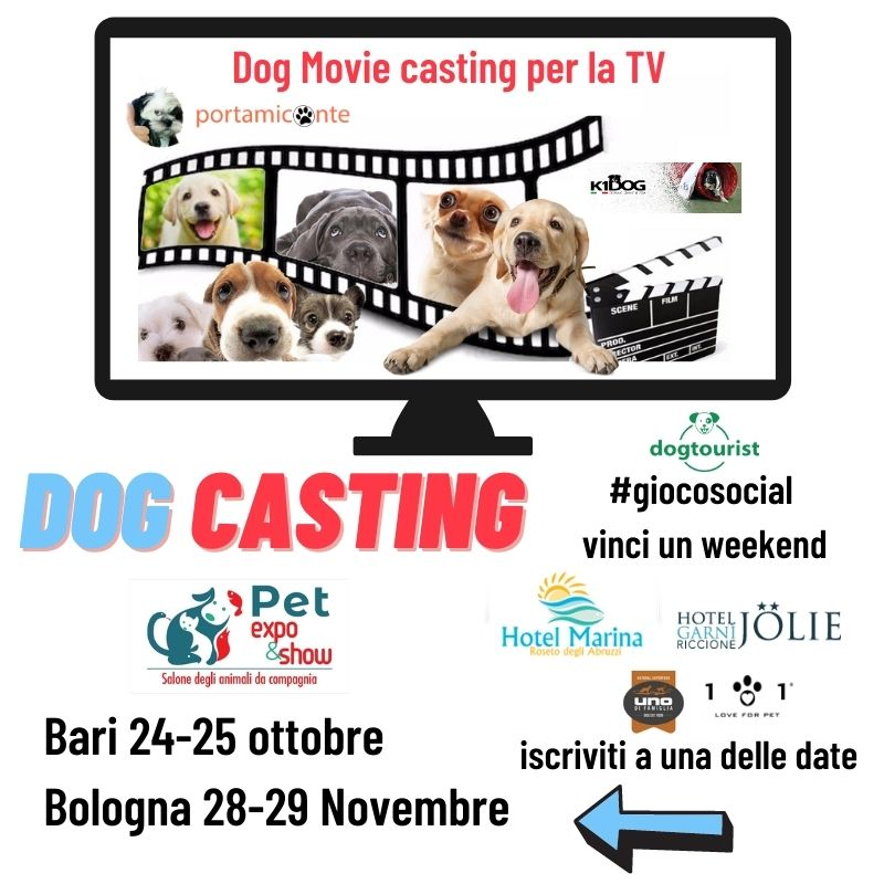 dog-casting-portamiconte
